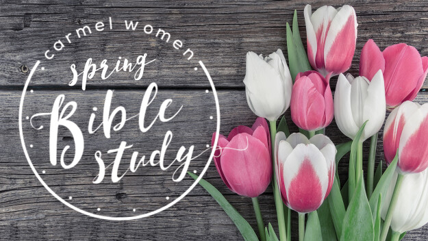 Women's Spring Bible Study Registration